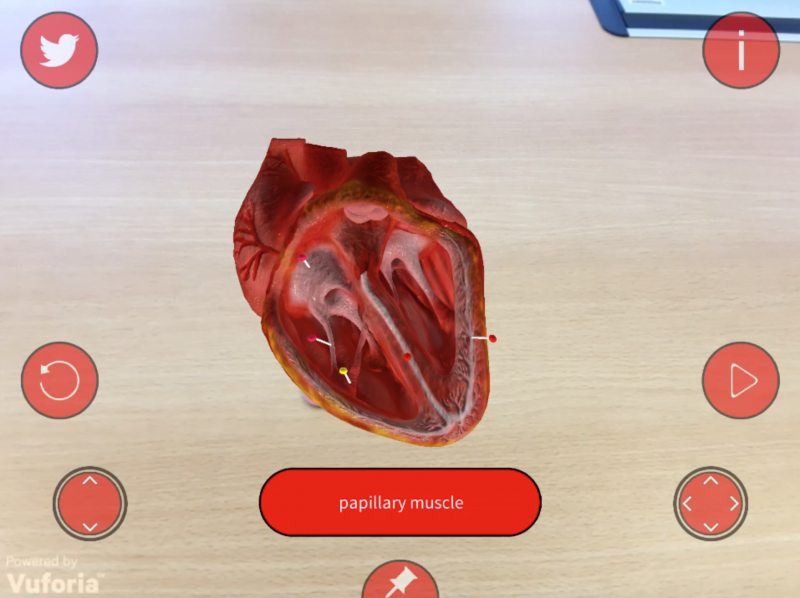 Human Biology Sample Augmented Reality App Released