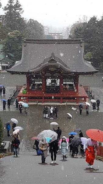 Tsurugaoka Hachiman-gū Shinto Shrine